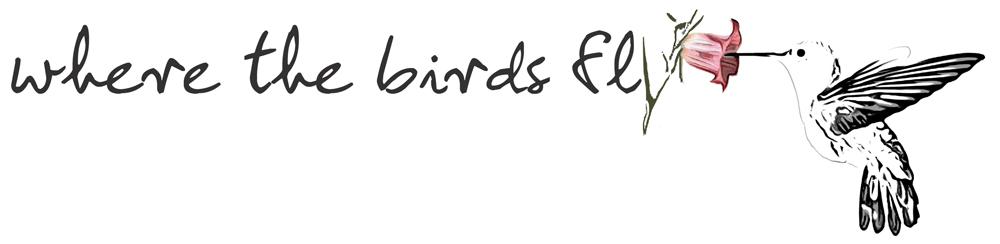 Where The Birds Fly